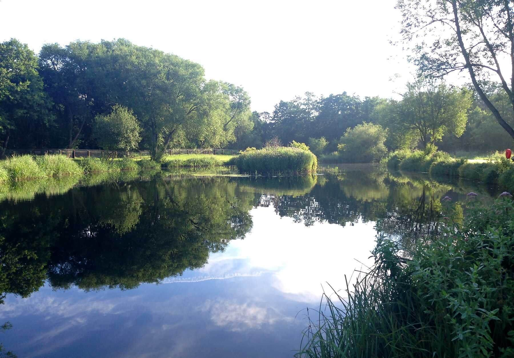 Narborough Trout And Coarse Lakes